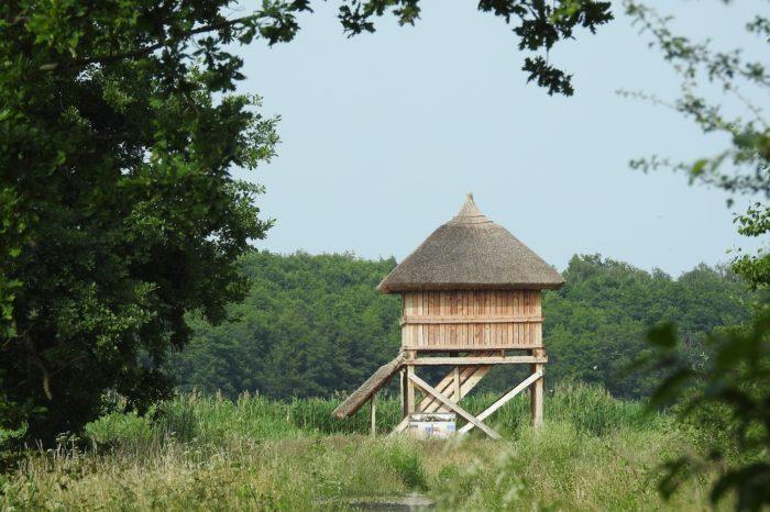 Kam v České republice na ornitologickou pozorovatelnu?
