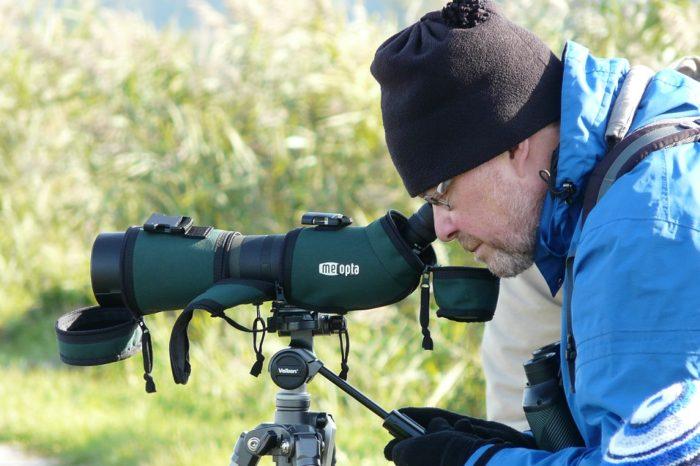 Pojďte na poslední letošní ornitologickou exkurzi do Tovačova