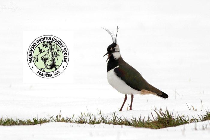 Moravský ornitologický spolek oslavil 85 let své existence
