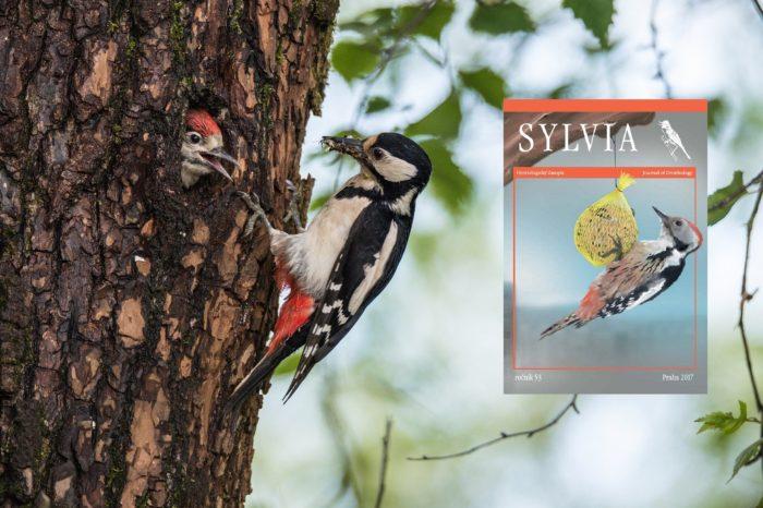 Vyšla nová Sylvia 53/2017
