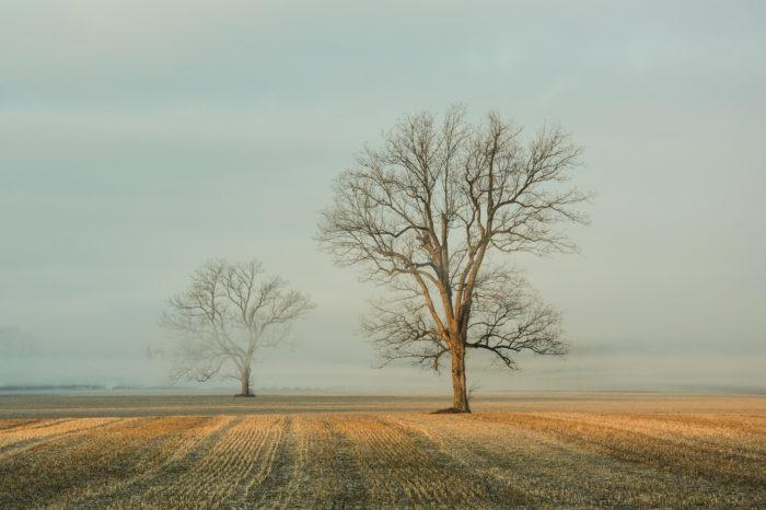Zemědělská krajina vzimě