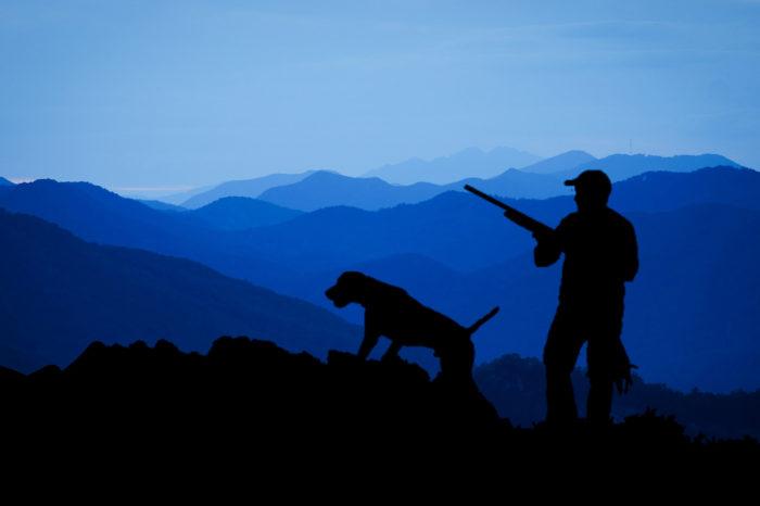 lov lov