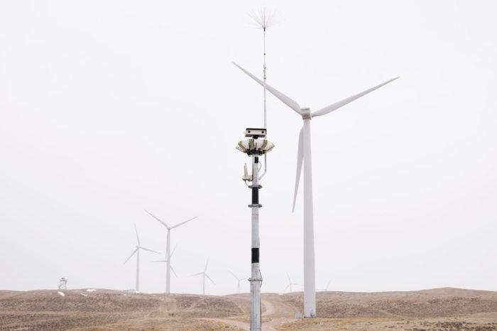 Lze novou technologií ochránit ptáky před větrnými turbínami?