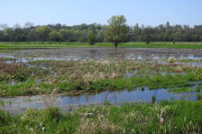 Ptačí parky se budou prezentovat na mezinárodním Ekofestivalu na Slovensku