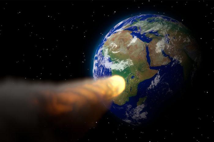 Jak ptáci přežili dopad asteroidu, který vyhladil dinosaury