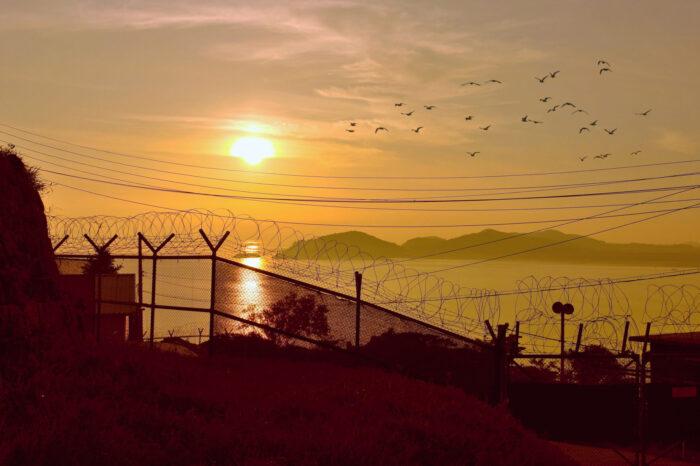 Mohou ptáci spojit Severní Koreu se světem?