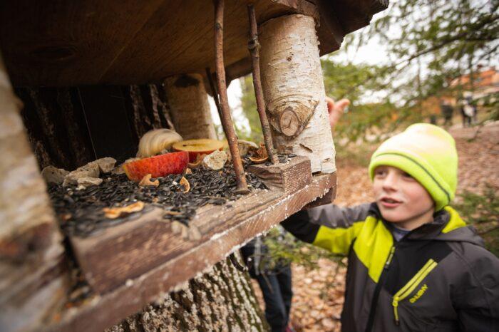 Děti v roli Mikulášů. Školáci naplnili ptačí krmítka v pražské oboře Hvězda