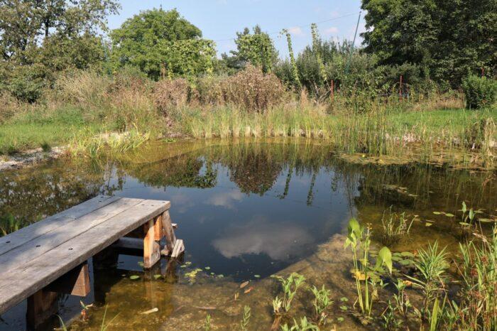 Jaká by měla být opravdová ptačí zahrada?