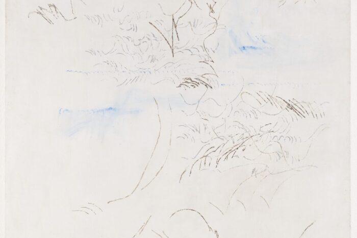 Zachytit ptačí zpěv: Olga Karlíková vystavuje v Museu Kampa