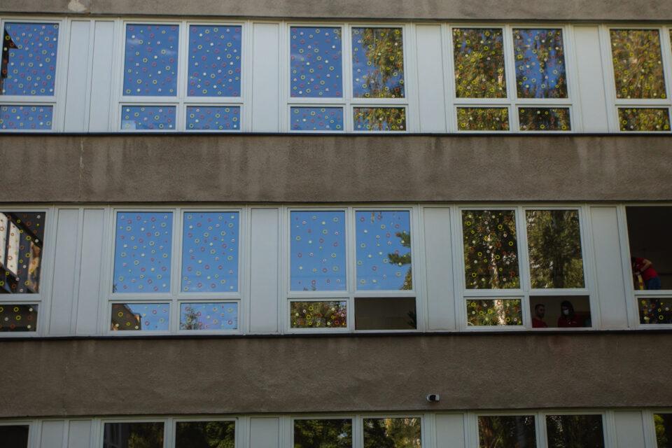 Samolepky vylepené na oknech pražské ZŠ Filosofská pomohou zachránit ptačí životy