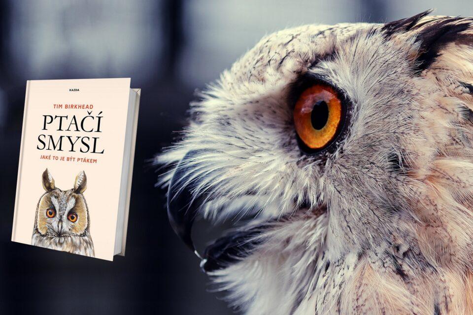 Recenze: Tim Birkhead - Ptačí smysl