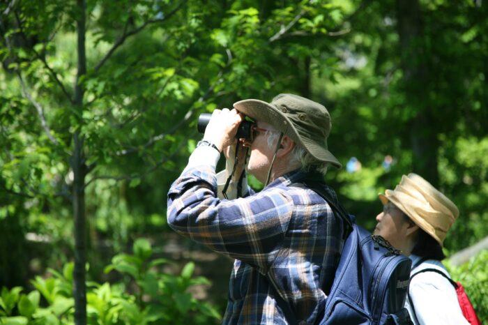 V New Yorku se lidé vyrovnávají s pandemií pomocí birdwatchingu